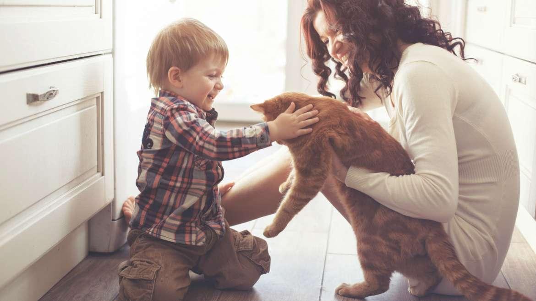 6 Manfaat Memiliki Hewan Peliharaan di Rumah Untuk Anak dan Keluarga