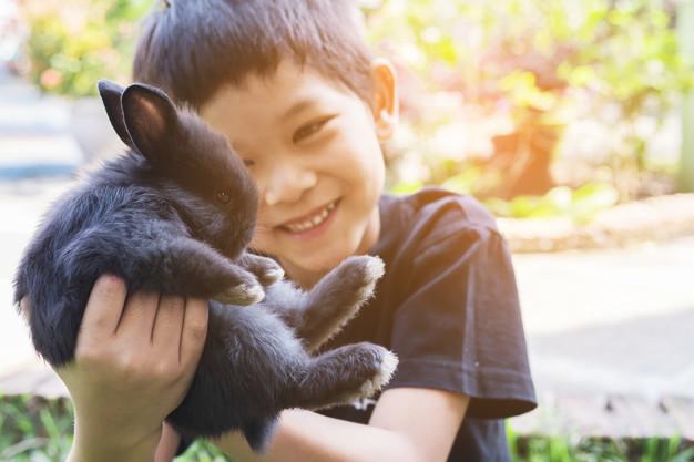 Cara Bijak Mengajarkan Si Kecil Menyayangi Binatang